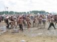 Przystanek Woodstock już w sierpniu